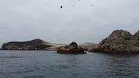 Reserva Nacional Sistema de Islas, Islotes y Puntas Guaneras