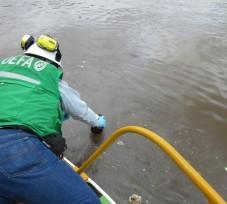 OEFA supervisa derrame de petróleo crudo en el Km 206+031 del Ramal Norte del Oleoducto Nor Peruano en Loreto