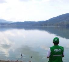 """El OEFA constata el vertimiento de aguas residuales en la laguna del Sauce """"Laguna Azul"""" en el departamento de San Martín"""