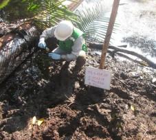 El OEFA continúa informando las acciones de supervisión que realiza ante los derrames de petróleo en el Oleoducto Norperuano