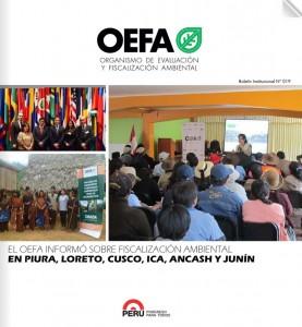 Boletín Institucional Diciembre 2013