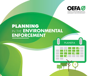 The Assessment and Enforcement Annual Plan
