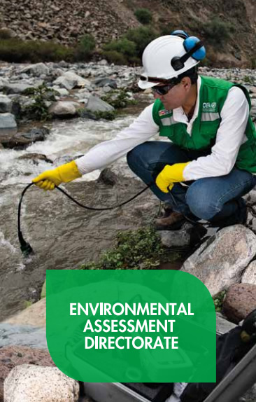 Environmental Assessment Directorate