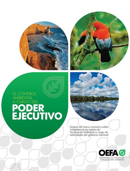 El control ambiental a cargo del Poder Ejecutivo