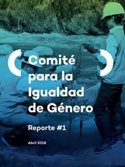 Comité para la Igualdad de Género – Reporte #1