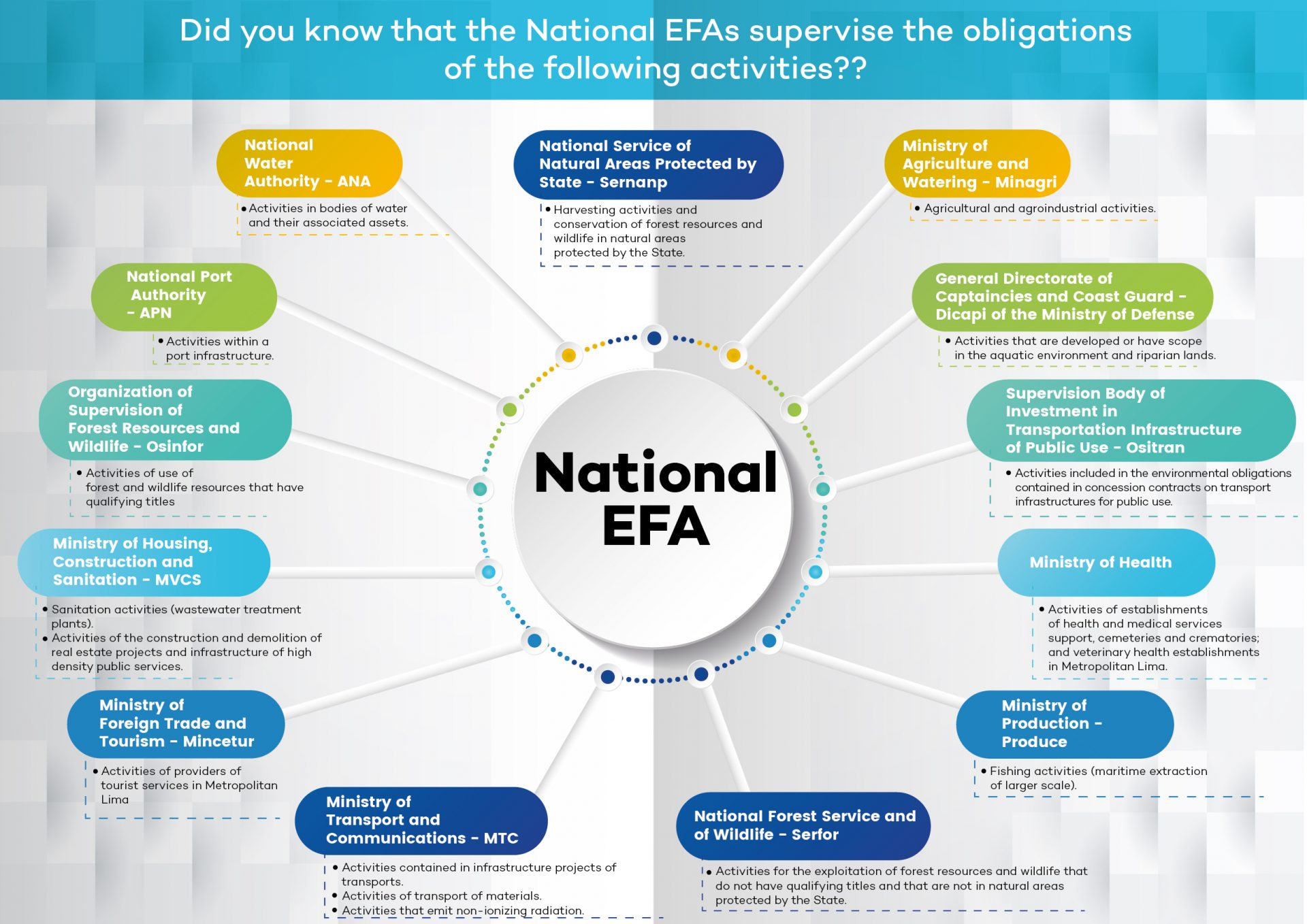 National EFA