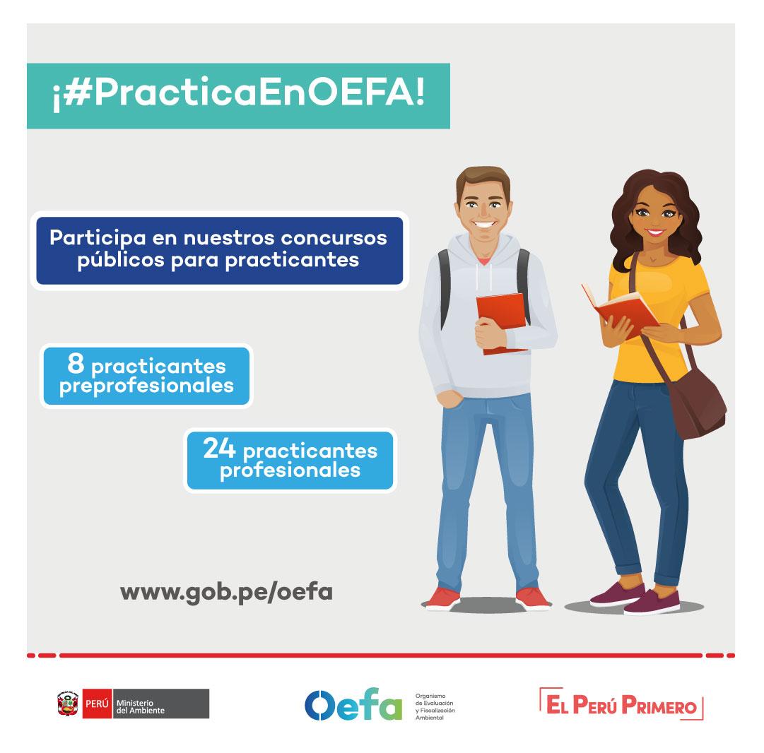 Practica en OEFA
