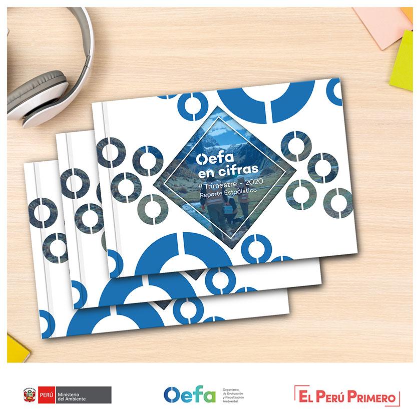 OEFA en cifras Reporte Estadístico – II Trimestre 2020