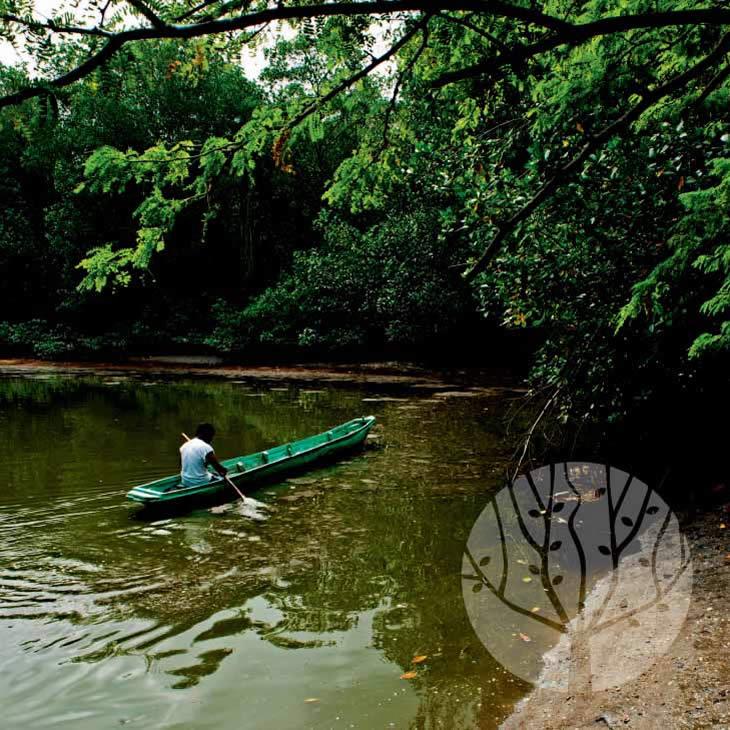 Canoa grande