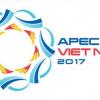 OEFA participó en el Foro de Cooperación Económica Asia-Pacífico (APEC) 2017 realizado en Vietnam