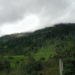 Entidades de Fiscalización Ambiental Cumplen con Presentar su Plan Anual de Evaluación y Fiscalización Ambiental Para el Año 2013