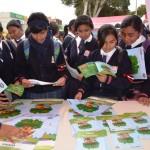 OEFA Participó en Jornada Cívica en la Ciudad de Pisco
