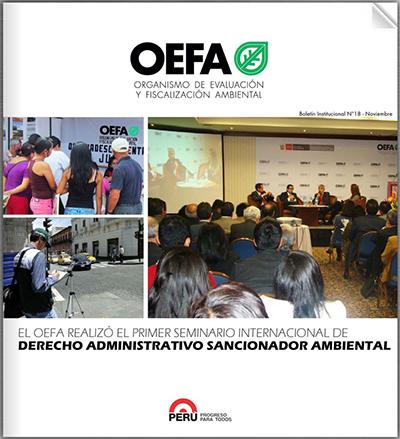 Boletín Institucional Noviembre 2013