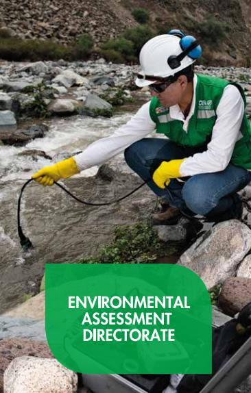 Environmental Assessment Directorate
