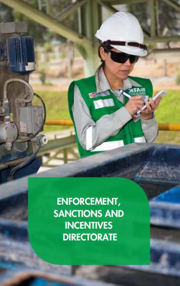 Enforcement, Sanctions and Incentives Directorate