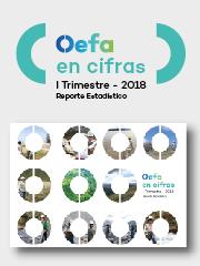 OEFA en cifras. Reporte Estadístico – I Trimestre 2018