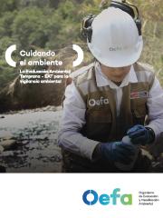 Cuidando el ambiente la evaluación ambiental temprana para la vigilancia ambiental