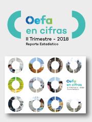 OEFA en cifras. Reporte Estadístico – II Trimestre 2018