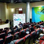 OEFA capacita a 55 funcionarios/as de las Entidades de Fiscalización Ambiental de la región Pasco para que formulen adecuadamente su Planefa 2019 y 2020