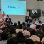 OEFA capacita a 121 funcionarios/as de las Entidades de Fiscalización Ambiental de la región Huánuco para que formulen adecuadamente su Planefa 2019 y 2020
