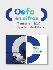 OEFA en cifras. Reporte Estadístico – I Trimestre 2019