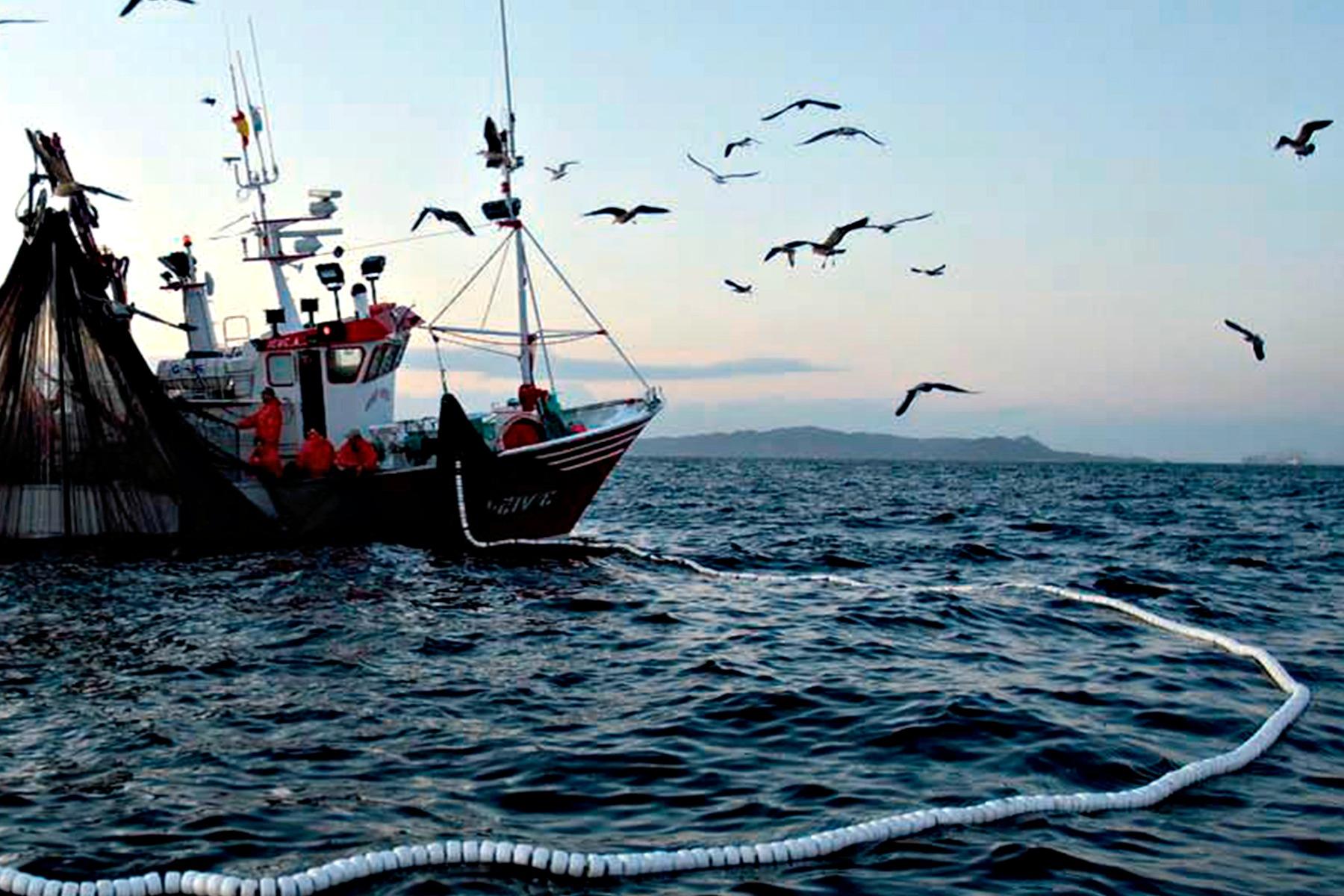 Charla Virtual MFA : Fiscalización ambiental en el sector acuicultura