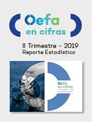 OEFA en cifras. Reporte Estadístico – II Trimestre 2019