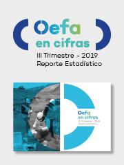 OEFA en cifras. Reporte Estadístico – III Trimestre 2019