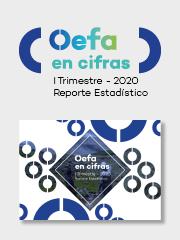 OEFA en cifras. Reporte Estadístico – I Trimestre 2020
