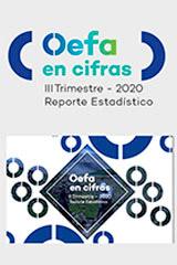 OEFA en cifras. Reporte Estadístico – III Trimestre 2020