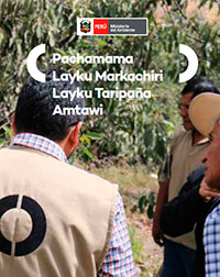 Pachamama Layku Markachiri Layku Taripaña Amtawi