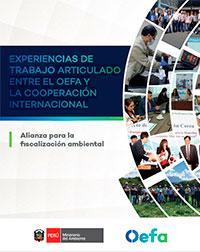 Experiencias de trabajo articulado entre el OEFA y la cooperación Internacional